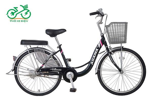 Xe đạp CLD BR 2402