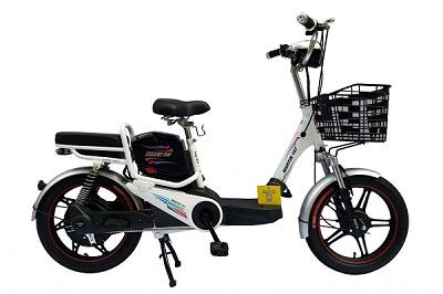Xe đạp điện Martin giá bao nhiêu trên thị trường hiện nay?