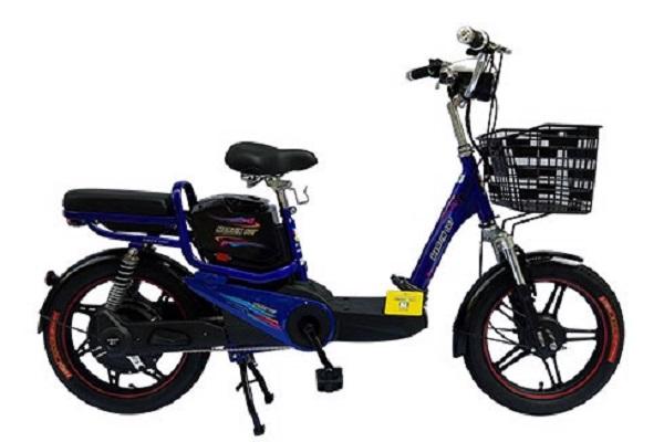 Xe đạp điện Martin giá bao nhiêu tại TP.HCM