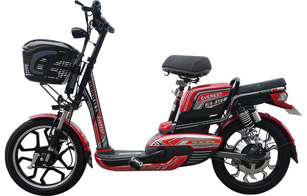 Xe đạp điện Everest EM9 với kiểu dáng thời trang – động cơ mạnh mẽ