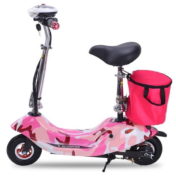Mẫu xe đạp điện mini hot nhất hiện nay là gì