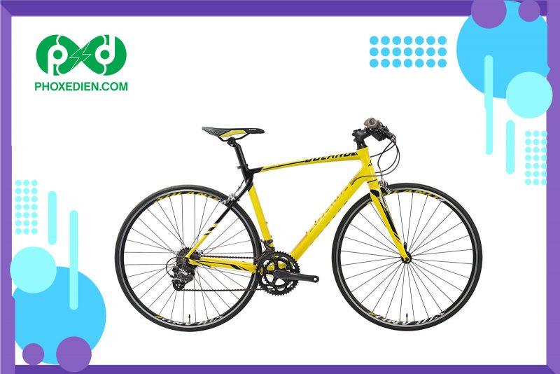 Xe đạp thể thao Asama RB SL2802T