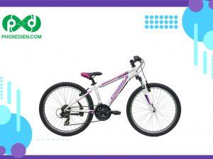 Xe đạp thể thao cao cấp JAWBREAKER (MS1)
